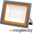 Прожектор JAZZway 5010079