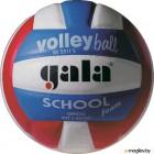 Мяч волейбольный Gala Sport School Foam Colou / BV5511S (размер 5, белый/голубой/красный)