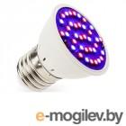 Светодиодные лампы для сада и растений (фитолампы) R-Led Два спектра E27 3W