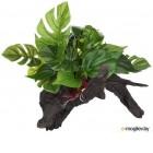 Декорация для террариума Lucky Reptile Forest Wood Premium / FWP-2