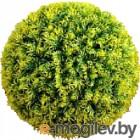 Искусственное растение Green Fly Самшит Мимоза / С-13-40