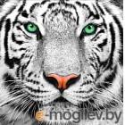 Набор алмазной вышивки Алмазная живопись Портрет белого тигра / АЖ-1788