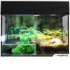 Террариум Lucky Reptile Стартовый комплект для амфибий / SK80BP-B (черный)