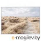 БЬЁРКСТА, Картина с рамой, Песчаные дюны, цвет алюминия, 200x140 см 292.984.77