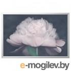 БЬЁРКСТА, Картина с рамой, Цветок, цвет алюминия, 118x78 см 092.984.02