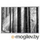 БЬЁРКСТА, Картина с рамой, Солнечные лучи, цвет алюминия, 200x140 см 492.978.82