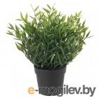 фейка, искусственное растение в горшке, д/дома/улицы комнатный бамбук, 9 см 204.339.41