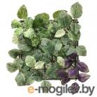 фейка, растение искусственное, настенный, д/дома/улицы зеленый/сиреневый, 26x26 см 003.495.47