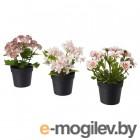 фейка, искусственное растение в горшке, д/дома/улицы розовый, 9 см 3 шт 603.953.34