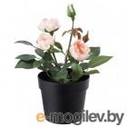 фейка, искусственное растение в горшке, д/дома/улицы, роза розовый, 9 см 203.952.94