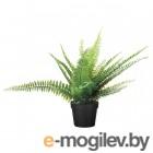 фейка, искусственное растение в горшке, д/дома/улицы папоротник, 9 см 904.339.47