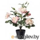 фейка, искусственное растение в горшке, д/дома/улицы, роза розовый, 12 см 103.952.99