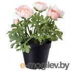 фейка, искусственное растение в горшке, д/дома/улицы, лютик розовый, 12 см 203.953.07
