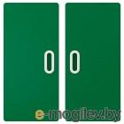 ФРИТИДС, Дверь, зеленый, 60x64 см 2 шт 003.867.90