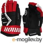 Перчатки хоккейные Warrior Alpha DX5 / DX5G9- BRD12