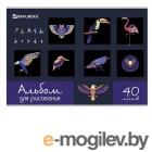 Альбомы, краски, кисти Альбом для рисования Brauberg Птицы 202x285mm А4 40 листов 105098