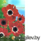 Семена цветов АПД Анемона. Де каен Голландия  / A30006 (10шт)