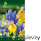 Семена цветов АПД Ирис голландский. Романо / A30261 (10шт)