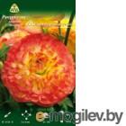 Семена цветов АПД Ранункулюс желто-оранжевый махровый / A30986 (10шт)