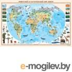 Настенная карта Белкартография Животный и растительный мир земли (ламинированная)