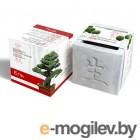 Умные растения ЭкоДом Вырасти Бонсай дома Ель В дизайнерском кубике ручной работы