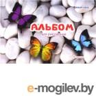 Альбом для рисования Darvish Бабочки / DV-12697-1