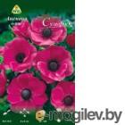 Семена цветов АПД Анемона Де каен Сульфиде / A30009 (10шт)