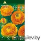 Семена цветов АПД Ранункулюс оранжевый махровый / A30665 (10шт)