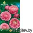 Семена цветов АПД Ранункулюс розовый махровый / A30667 (10шт)