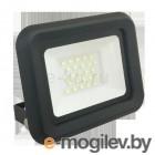 Прожектор светодиодный СДО PFL- C- 30Вт new 6500K IP65 (с рамкой)   5001466B   Jazzway