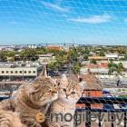 Сетка на окно антикошка Ferplast Cat Net XL / 85182700