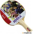Настольный теннис Joola Spirit