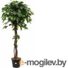 Искусственное растение GrenTrade Фикус Йорк / 12156