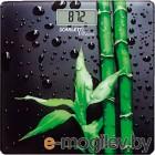SCARLETT SC-BS33E051 bamboo