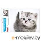 Buro BU-M40087 рисунок/котенок
