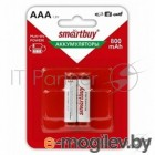Smartbuy ААA 800 мАч NiMH, 2 шт. в упаковке (SBBR-3A02BL800)