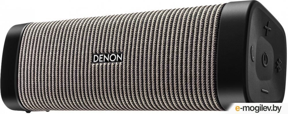 Denon Envaya DSB-250 Grey