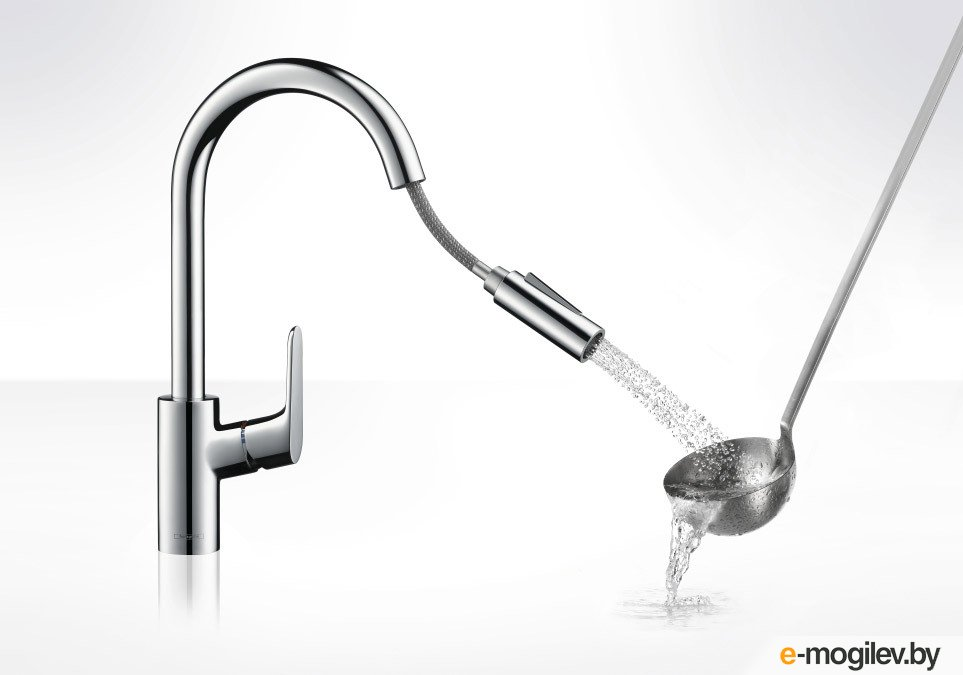 Hansgrohe Focus 31815000